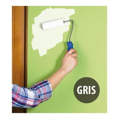 Peinture magnétique gris clair - 200 Ml pour fixation magnets sur mur