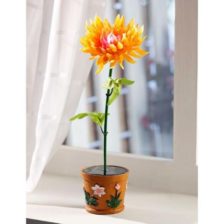 plante artificielle dahlia led solaire couleur changeante. Black Bedroom Furniture Sets. Home Design Ideas