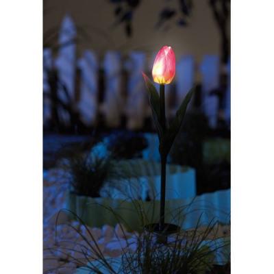 2 Tulipes lumineuses à LED fonctionnant à l'énergie solaire