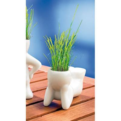 Décoration pour fenêtres - Petit pot en céramique - Position couchée