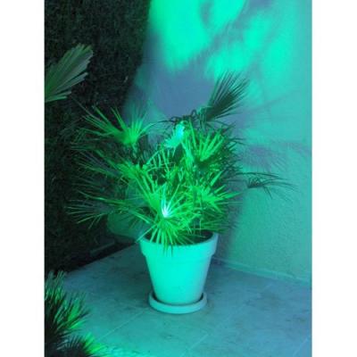 Sport extérieur 28 couleurs LED