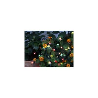 Guirlande d'ampoules 50 LED colorées avec capteur solaire rechargeable - Convient pour l'extérieur - Longueur 7 m