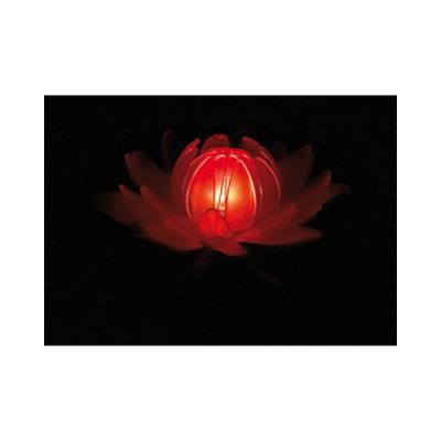 Fleur lumineuse pour piscine ou plan d'eau - Lotus à couleur changeante