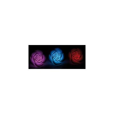 3 Roses lumineuses pour piscine ou plan d'eau - LED à couleur changeante