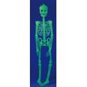 Squelette phosphorescent plat de 90 cm à suspendre au mur