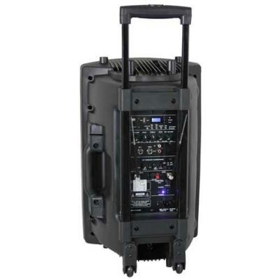 Enceinte sono 800 w mobile 2 micros, lecteur mp3 et bluetooth